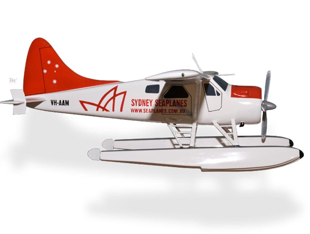 Seaplanes plane